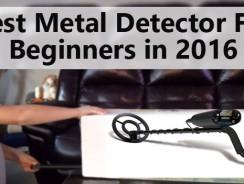 Best Metal Detector For Beginners